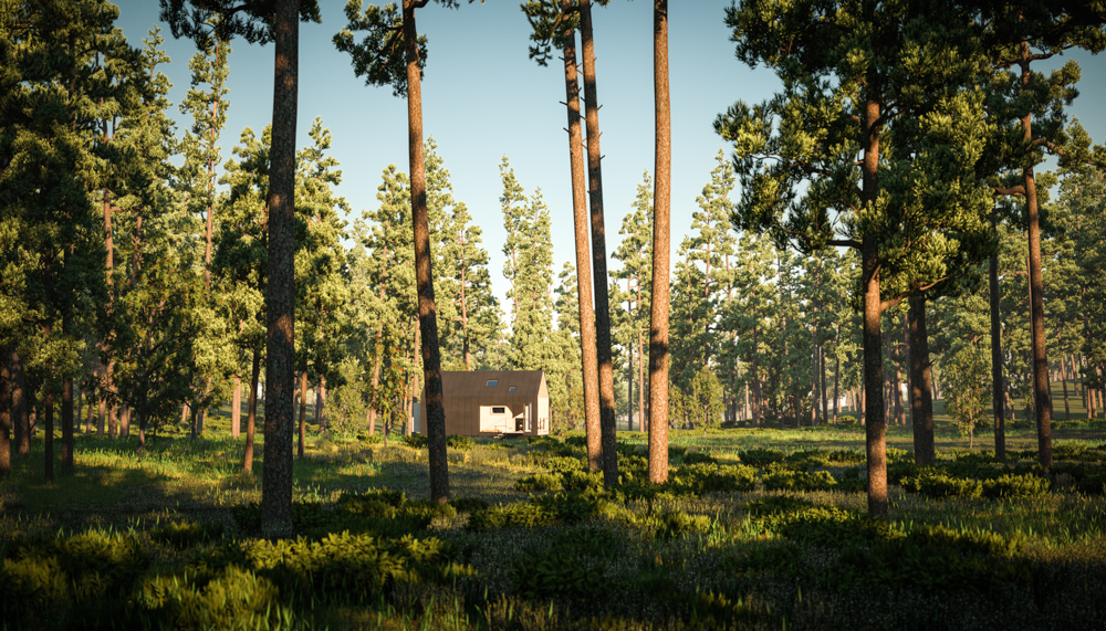 Wild Cabin PINES_View02