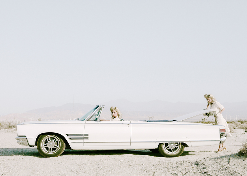 The Trunk © Anja Niemi